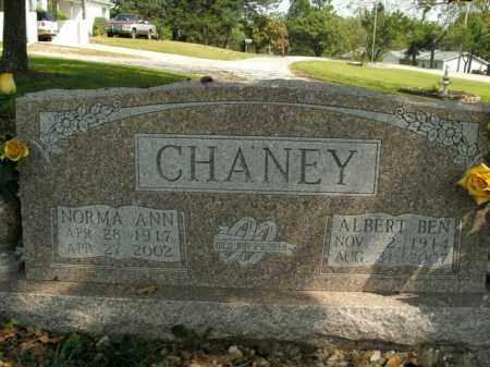 CHANEY, NORMA ANN - Boone County, Arkansas | NORMA ANN CHANEY - Arkansas Gravestone Photos