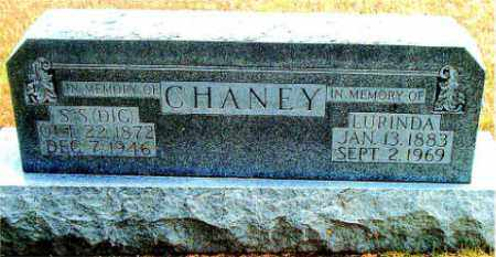 CHANEY, S. S. (DIG) - Boone County, Arkansas | S. S. (DIG) CHANEY - Arkansas Gravestone Photos
