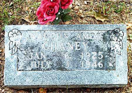 CHANEY, VAUGHN AMOS - Boone County, Arkansas | VAUGHN AMOS CHANEY - Arkansas Gravestone Photos