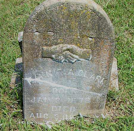 CLARK, FANNIE A. - Boone County, Arkansas | FANNIE A. CLARK - Arkansas Gravestone Photos