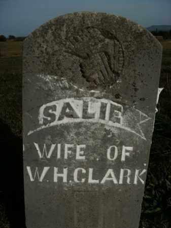 CLARK, SALIE - Boone County, Arkansas | SALIE CLARK - Arkansas Gravestone Photos