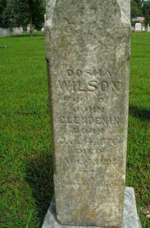 WILSON CLENDENIN, DOSHA - Boone County, Arkansas | DOSHA WILSON CLENDENIN - Arkansas Gravestone Photos