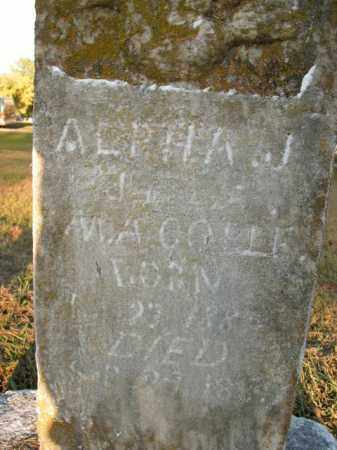 COELE, ALPHA J. - Boone County, Arkansas | ALPHA J. COELE - Arkansas Gravestone Photos