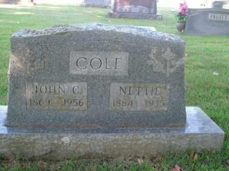 COLE, NETTIE - Boone County, Arkansas | NETTIE COLE - Arkansas Gravestone Photos