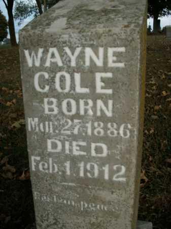 COLE, WAYNE - Boone County, Arkansas | WAYNE COLE - Arkansas Gravestone Photos