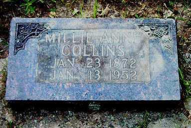 COLLINS, MILLIE ANNE - Boone County, Arkansas | MILLIE ANNE COLLINS - Arkansas Gravestone Photos