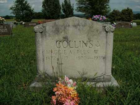 COLLINS, PLES W. - Boone County, Arkansas | PLES W. COLLINS - Arkansas Gravestone Photos
