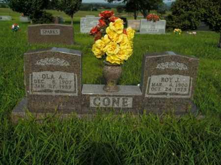 HANKINS CONE, OLA AGNES - Boone County, Arkansas | OLA AGNES HANKINS CONE - Arkansas Gravestone Photos