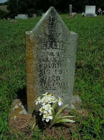 COOK, NELLIE - Boone County, Arkansas | NELLIE COOK - Arkansas Gravestone Photos