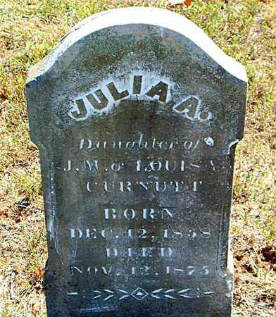 CURNUTT, JULIA  A. - Boone County, Arkansas   JULIA  A. CURNUTT - Arkansas Gravestone Photos