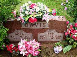 DAVIS, LEE - Boone County, Arkansas | LEE DAVIS - Arkansas Gravestone Photos