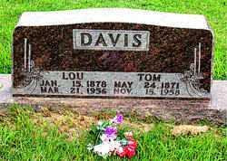 SHRUM DAVIS, LOUISA FLORENCE - Boone County, Arkansas | LOUISA FLORENCE SHRUM DAVIS - Arkansas Gravestone Photos