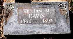 DAVIS, WILLIAM M. - Boone County, Arkansas | WILLIAM M. DAVIS - Arkansas Gravestone Photos