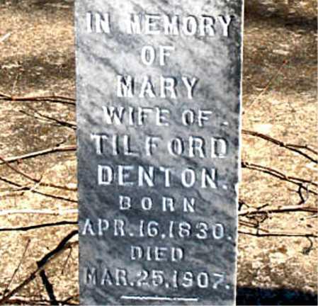 DENTON, MARY - Boone County, Arkansas | MARY DENTON - Arkansas Gravestone Photos