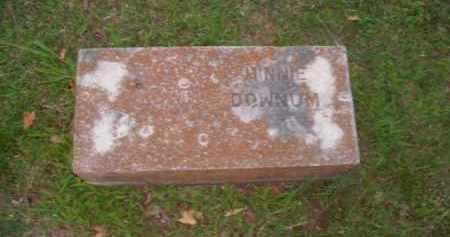 DOWNUM, MINNIE - Boone County, Arkansas   MINNIE DOWNUM - Arkansas Gravestone Photos