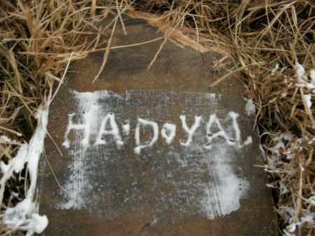 DOYAL, H.A. (HESTER ANN BAKER?) - Boone County, Arkansas | H.A. (HESTER ANN BAKER?) DOYAL - Arkansas Gravestone Photos