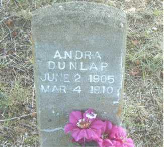 DULAP, ANDRA - Boone County, Arkansas   ANDRA DULAP - Arkansas Gravestone Photos