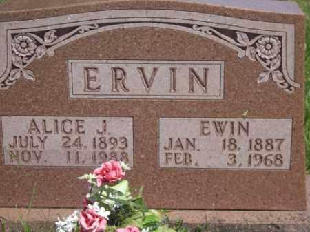 ERVIN, ALICE JANE - Boone County, Arkansas | ALICE JANE ERVIN - Arkansas Gravestone Photos