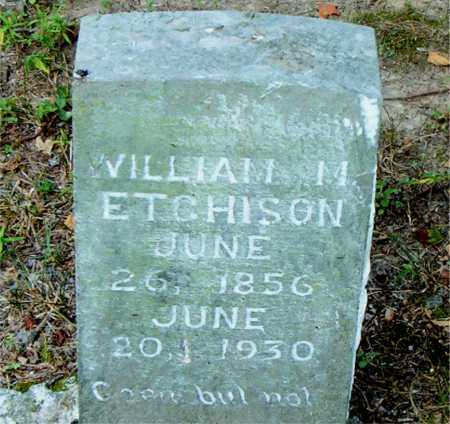 ETCHISON, WILLIAM M - Boone County, Arkansas | WILLIAM M ETCHISON - Arkansas Gravestone Photos