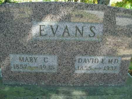 EVANS, DAVID E. - Boone County, Arkansas | DAVID E. EVANS - Arkansas Gravestone Photos