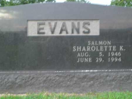 EVANS, SHAROLETTE K. - Boone County, Arkansas | SHAROLETTE K. EVANS - Arkansas Gravestone Photos