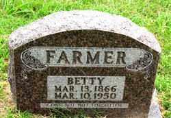FARMER, BETTY - Boone County, Arkansas   BETTY FARMER - Arkansas Gravestone Photos