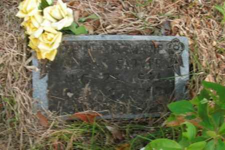 ADKINS FARMER, CATHERINE MARIE - Boone County, Arkansas | CATHERINE MARIE ADKINS FARMER - Arkansas Gravestone Photos
