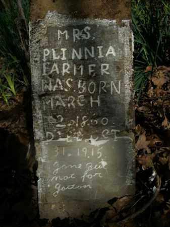 FARMER, PLINNIA - Boone County, Arkansas | PLINNIA FARMER - Arkansas Gravestone Photos