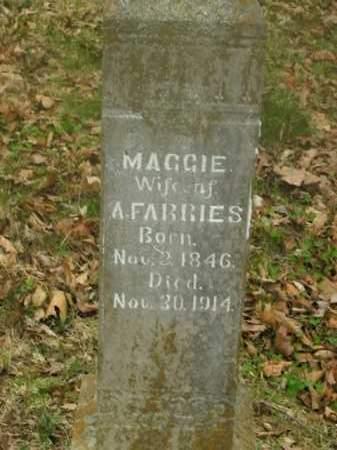 FARRIES, MAGGIE - Boone County, Arkansas | MAGGIE FARRIES - Arkansas Gravestone Photos