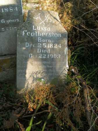 FEATHERSTON, LUISA - Boone County, Arkansas | LUISA FEATHERSTON - Arkansas Gravestone Photos