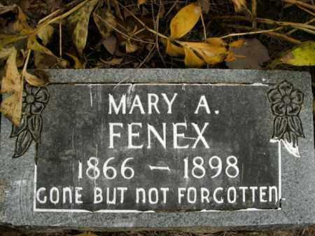FENEX, MARY A. - Boone County, Arkansas   MARY A. FENEX - Arkansas Gravestone Photos