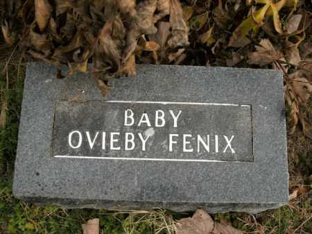 FENIX, OVIEBY - Boone County, Arkansas | OVIEBY FENIX - Arkansas Gravestone Photos