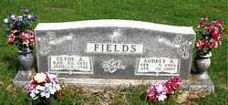RAYNOR FIELDS, AUDREY BELLE - Boone County, Arkansas | AUDREY BELLE RAYNOR FIELDS - Arkansas Gravestone Photos