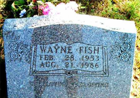 FISH, WAYNE - Boone County, Arkansas | WAYNE FISH - Arkansas Gravestone Photos