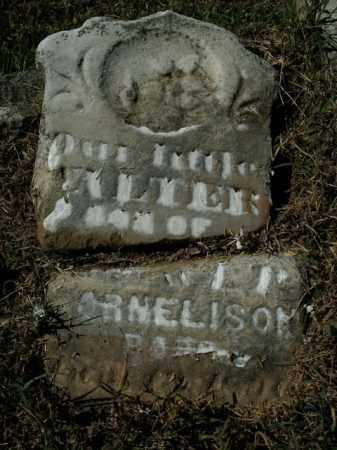 NELISON, WALTER - Boone County, Arkansas | WALTER NELISON - Arkansas Gravestone Photos