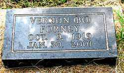 FORNEY, VERNON - Boone County, Arkansas | VERNON FORNEY - Arkansas Gravestone Photos