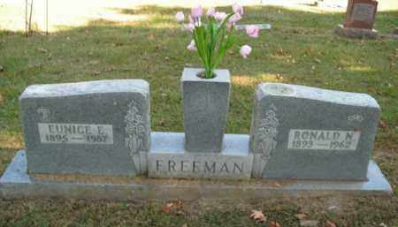 FREEMAN, EUNICE E. - Boone County, Arkansas | EUNICE E. FREEMAN - Arkansas Gravestone Photos