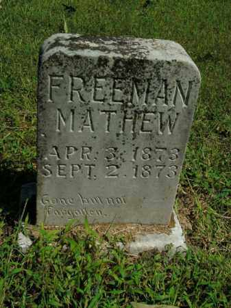 FREEMAN, MATHEW - Boone County, Arkansas | MATHEW FREEMAN - Arkansas Gravestone Photos
