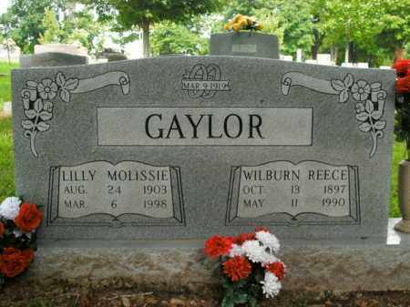 GAYLOR, LILLY MOLISSIE - Boone County, Arkansas | LILLY MOLISSIE GAYLOR - Arkansas Gravestone Photos