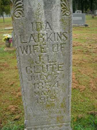LARKINS GLUTE, IDA - Boone County, Arkansas | IDA LARKINS GLUTE - Arkansas Gravestone Photos