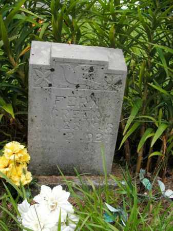 GREER, FERN - Boone County, Arkansas | FERN GREER - Arkansas Gravestone Photos