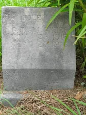 GREER, ROLEN D. - Boone County, Arkansas | ROLEN D. GREER - Arkansas Gravestone Photos