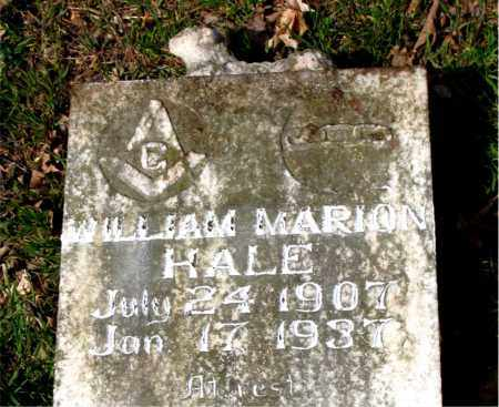 HALE, WILLIAM MARION - Boone County, Arkansas | WILLIAM MARION HALE - Arkansas Gravestone Photos