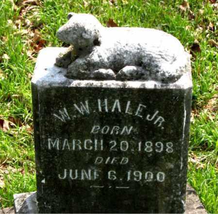 HALE, JR, W.  W. - Boone County, Arkansas | W.  W. HALE, JR - Arkansas Gravestone Photos