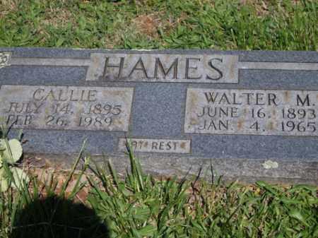 HAMES, WALTER M. - Boone County, Arkansas   WALTER M. HAMES - Arkansas Gravestone Photos