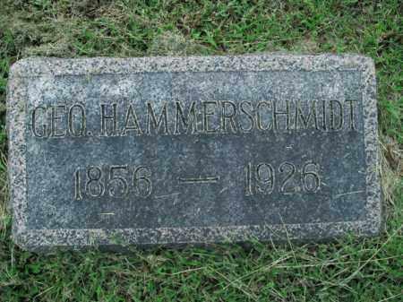 HAMMERSCHMIDT, GEORGE - Boone County, Arkansas   GEORGE HAMMERSCHMIDT - Arkansas Gravestone Photos