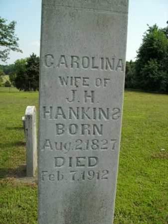 HANKINS, CAROLINA - Boone County, Arkansas | CAROLINA HANKINS - Arkansas Gravestone Photos