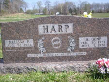 HARP, A. GENE - Boone County, Arkansas   A. GENE HARP - Arkansas Gravestone Photos