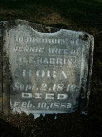 HARRIS, JENNIE - Boone County, Arkansas | JENNIE HARRIS - Arkansas Gravestone Photos