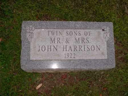 HARRISON, TWIN SONS - Boone County, Arkansas | TWIN SONS HARRISON - Arkansas Gravestone Photos